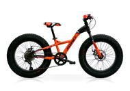 SpeedCross Fat Bike 20
