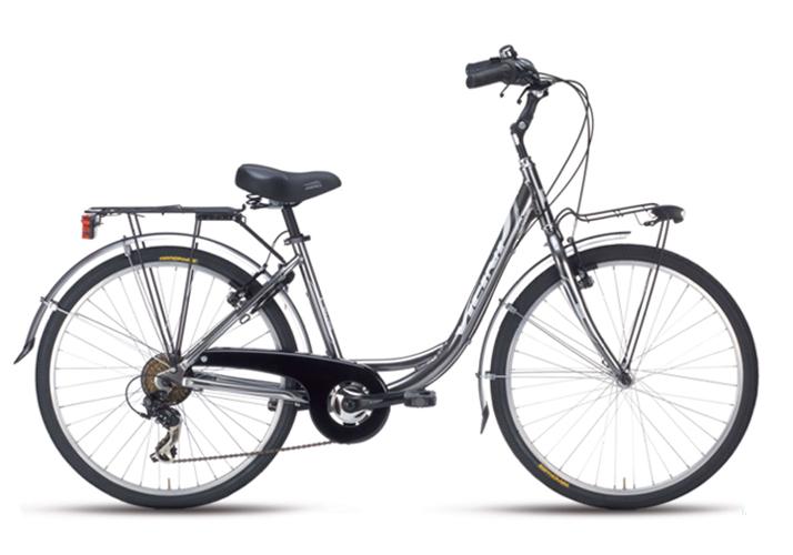 Bicicletta Vicini